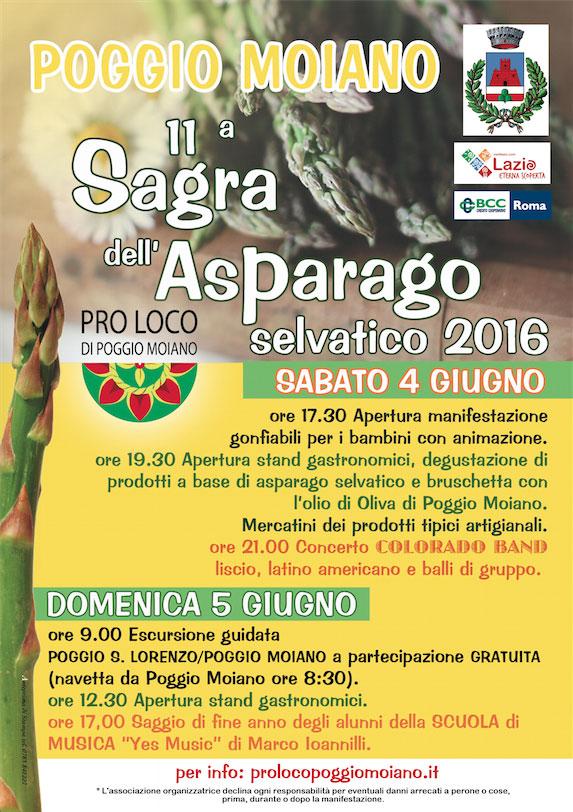 vol-sagra-asparago-2016