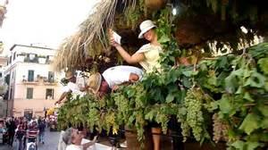stand festa uva